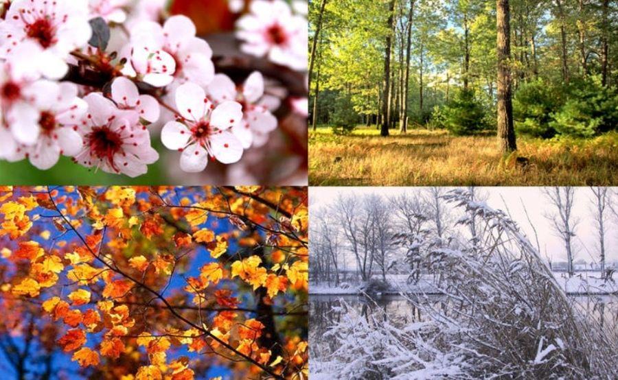 فصل های سال به ترکی استانبولی