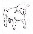 گوسفند در شازده کوچولو